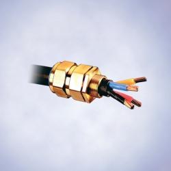 Кабельные вводы Ex e, для кабелей армированных стальной проволокой, серия 8163/2-CWe