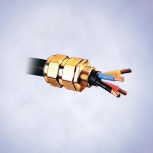 Кабельные вводы серии 8163/2-CXe, для кабелей армированных проволочной оплеткой,Ex e